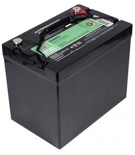 Interstate Battery Pair Group 24 12V 75Ah C Terminal AGM