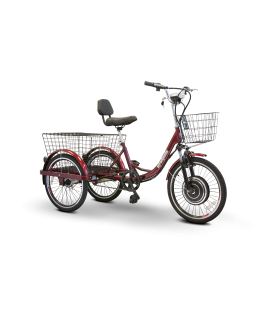 E-Wheels EW-29 3 Wheel Electric Trike