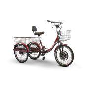 EWheels EW-29 3-Wheel Electric Trike