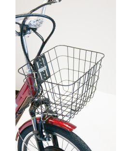 E-Wheels EW-29 Electric Trike