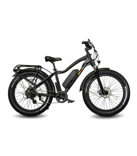 EWheels BAM EW-Supreme Electric Bike