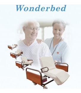 Powered Rotor Assist Bed - Great Life Healthcare